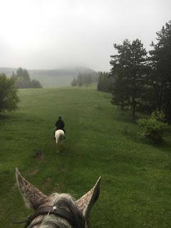 Ratsastaja Romaniassa sumuisella vuorella