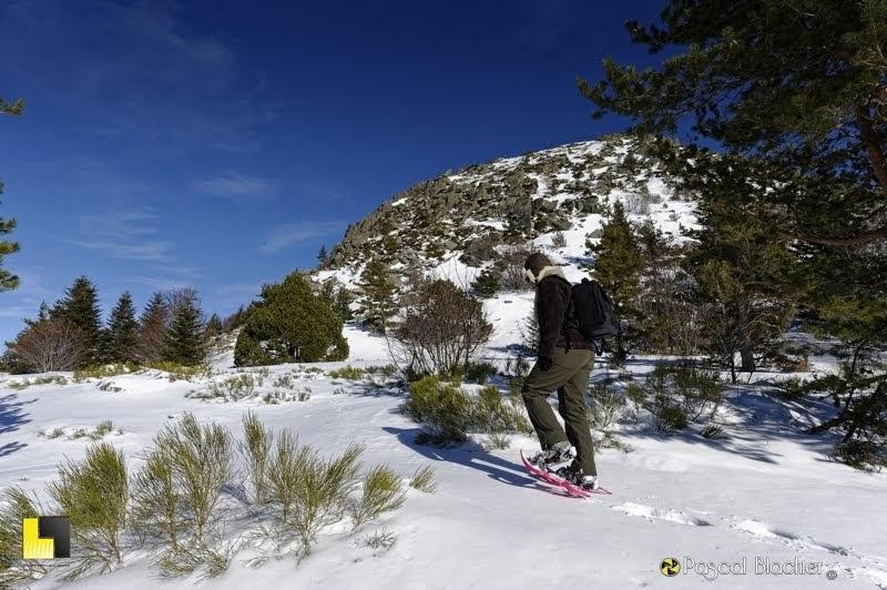 au dela du cliché tour du gerbier de jonc en raquettes à neiges photo Pascal Blachier