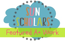 I Received an A+ at SunScholars.com