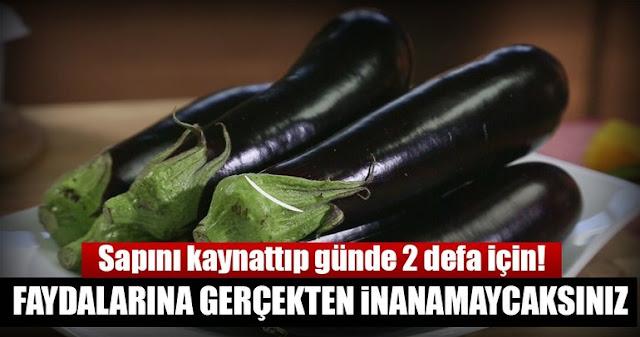 Patlıcan Sapları, Basuru Olanlar İçin Şifa Dağıtıyor...