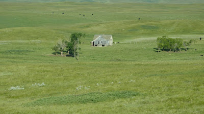 Cypress Hills, Alberta, house, abandoned, Woolchester, Eagle Butte