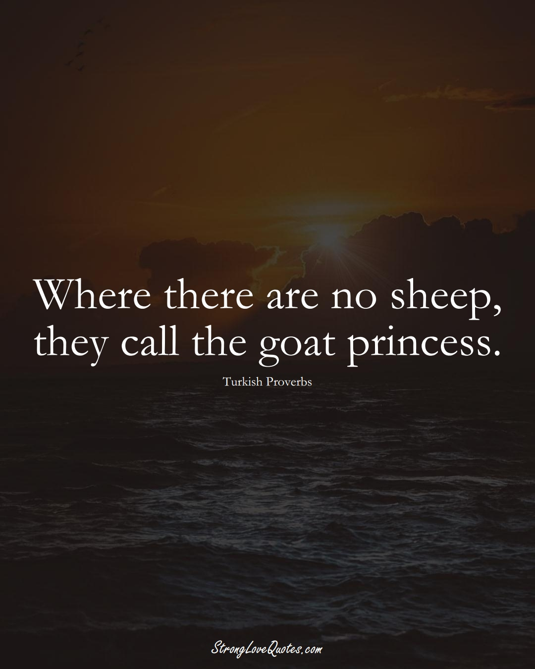 Where there are no sheep, they call the goat princess. (Turkish Sayings);  #MiddleEasternSayings