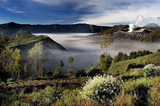 How to book Mount Bromo Midnight Tour