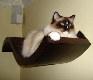 Cat Padded Perch
