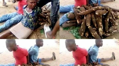 Woman And Her 2 Sons Publicly Disgraced For Stealing Cassava From People's Farms (Photos)