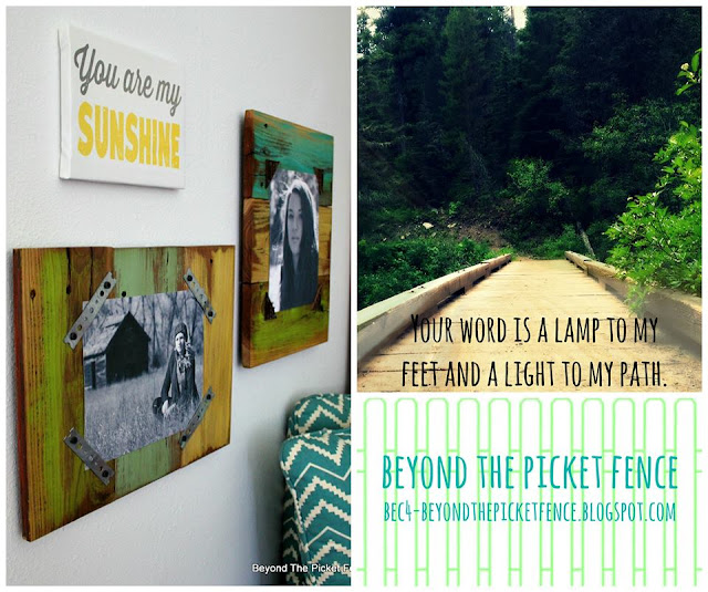 Beyond the Picket Fence projects and posts
