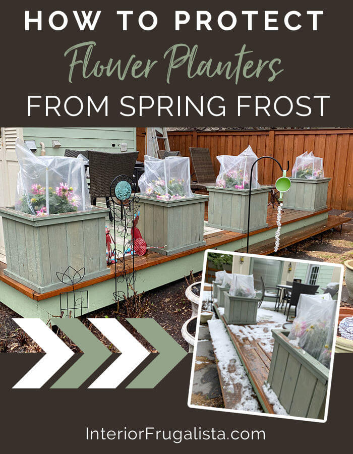 How to make quick and easy frost blankets from clear yard waste bags in a pinch to protect large flower planters from spring or late summer frost. #frostblankeforplants #flowerplanters #springgardening