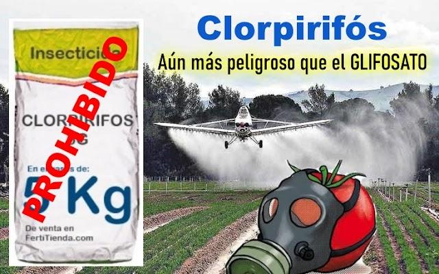 Al fin Europa Prohíbe el uso en la Agricultura del Insecticida más Utilizado en España