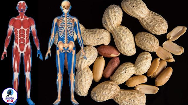 10 Beneficios Increíbles de Comer Cacahuate o Maní