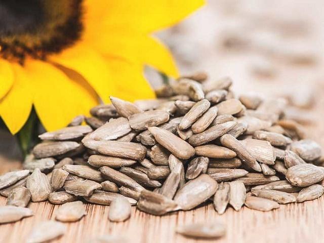 Sunflower seeds benefit from weight loss