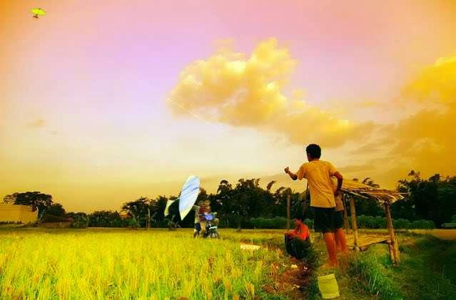 Mengenal Lebih Dekat Tradisi Main Layang Aceh