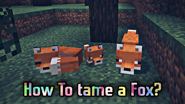 In Minecraft, learn how to tame a fox and make a new friend