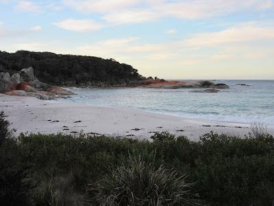 Tramo de Bay of Fires Walk, cerca de St. Helens, en Tasmania