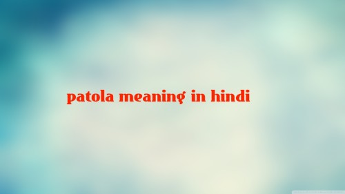 patola meaning in hindi