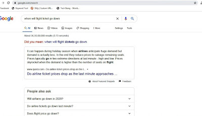 google search when will flight price go down