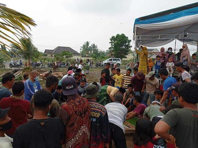 Hari Raya Idul Adha tiba, Warga menyambut gembira lantaran Bupati OKU Timur berqurban 27 ekor Sapi