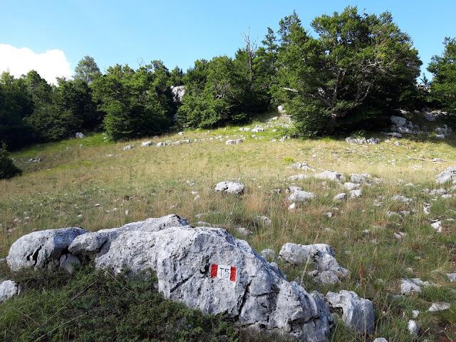Fine del sentiero T5 a Campo Moricento
