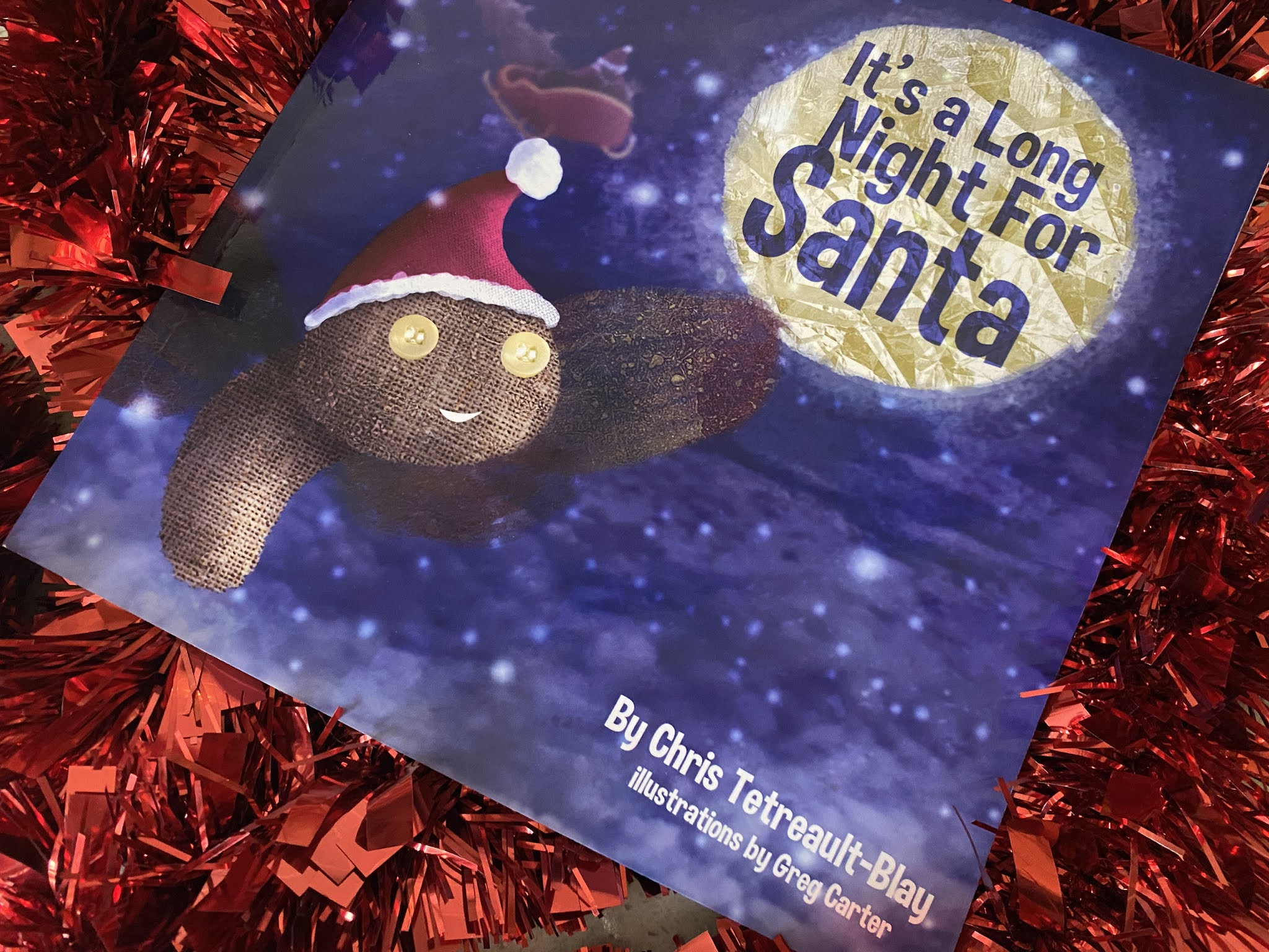 It's A Long Night For Santa Book