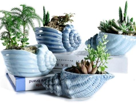 Mini Seashell Planters