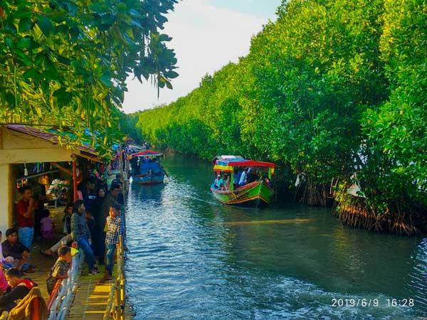 Ekowisata Mangrove Sungai Rindu Bekasi