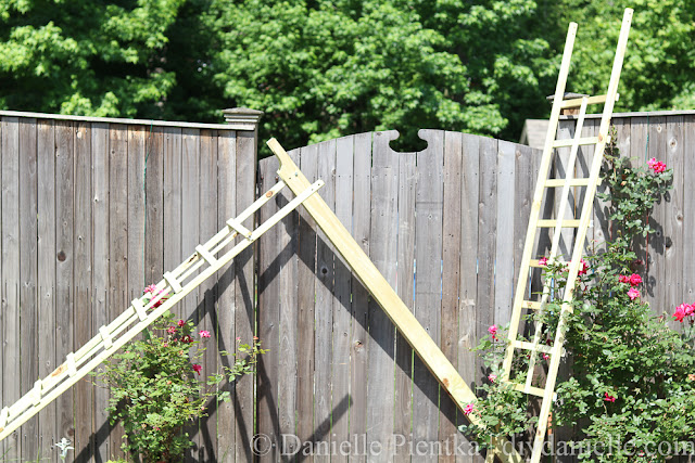 DIY Wooden Arbor being assembled.
