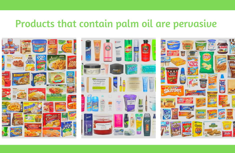 palm oil complicated environment relationship jump including after