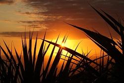 foto tramonto di sera