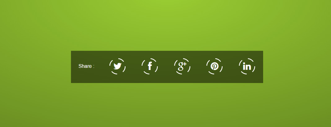 Social Icons SVG Stroke Animation On Hover