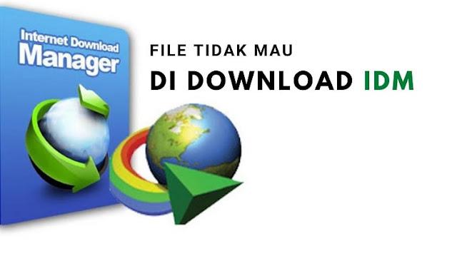 File yang Tidak Mau di Download IDM