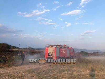 ΥΨΗΛΟΣ κίνδυνος πυρκαγιάς για σήμερα ΤΕΤΑΡΤΗ στο Δήμο Αριστοτέλη