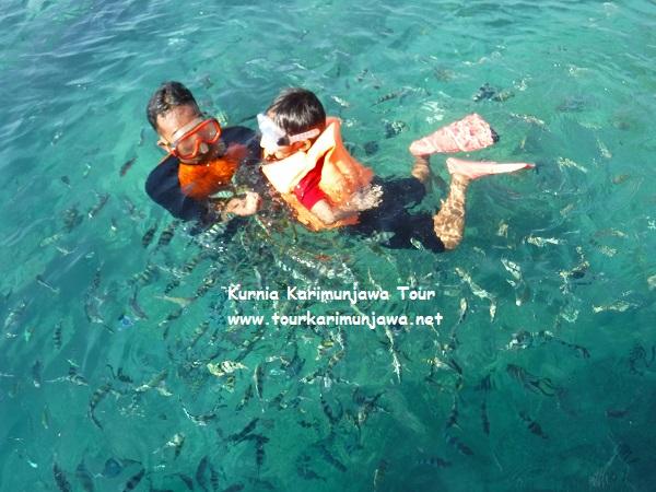 aktivitas tour laut karimun jawa
