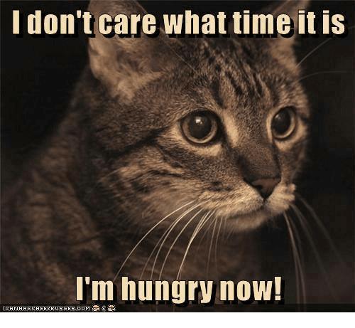 5 sebab kenapa asyik rasa lapar je. No. 5 tu punca utamanya.
