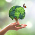 ZPP Meio Ambiente: 10 dicas importantes para preservar o meio ambiente