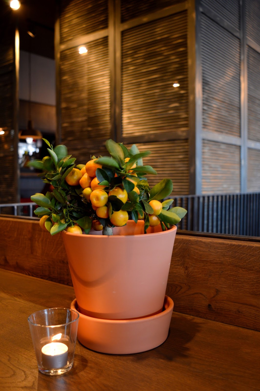 L'Osteria Southampton Review, L'Osteria Southampton, Hampshire bloggers, places to eat Southampton