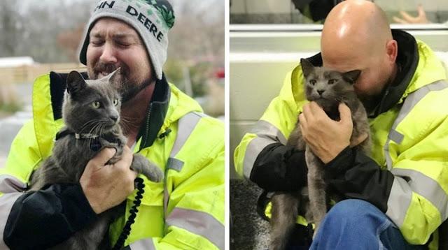 Дальнобойщик расплакался, найдя своего потерянного кота, которого искал много месяцев