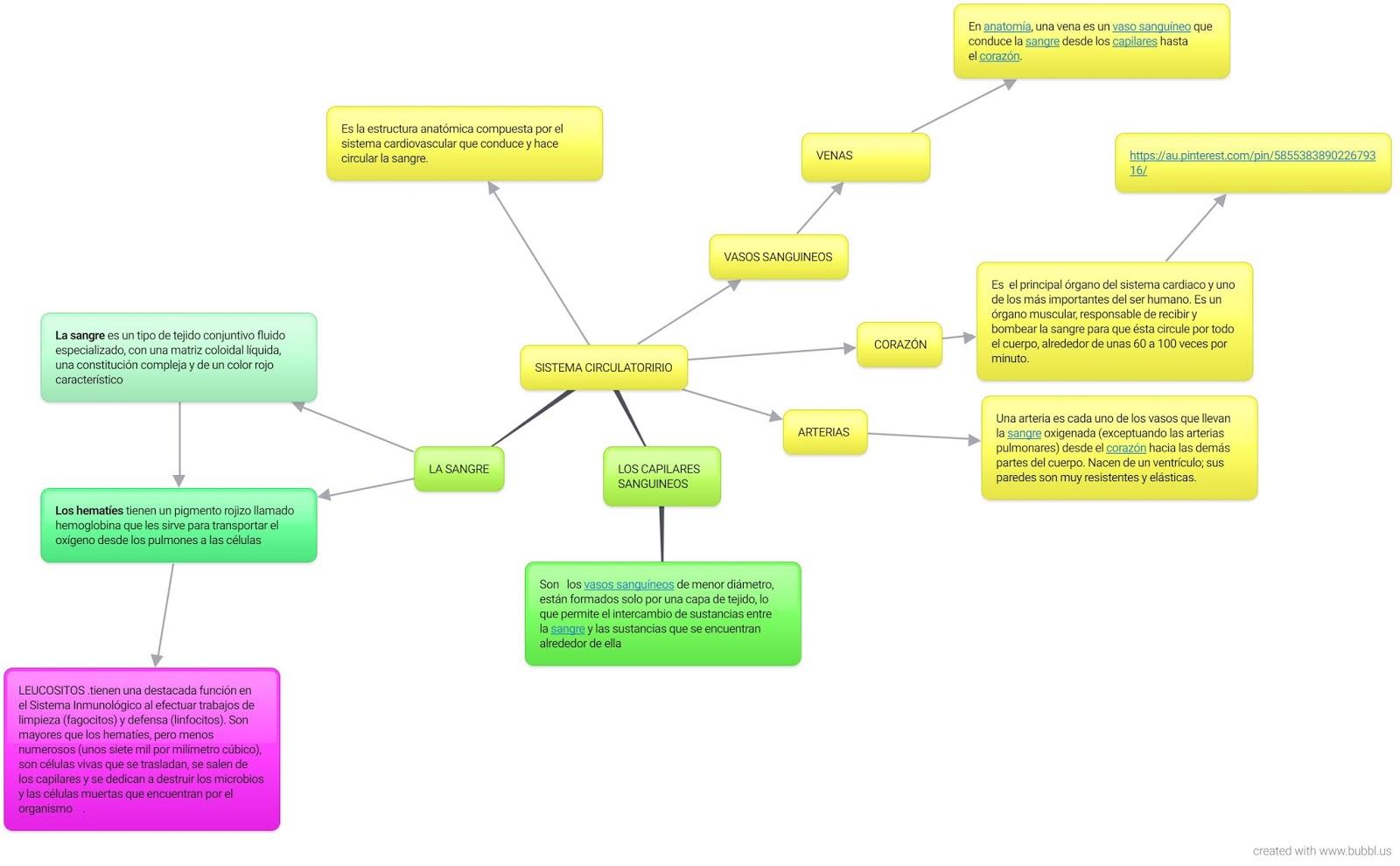La vida a través de la ciencia : mapa conceptual sistema circulatorio