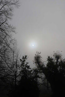 The sun just burning through the fog