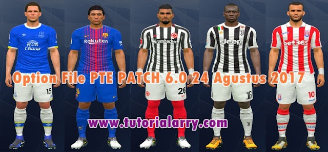 Transfer Update Option File PTE Patch 6.0