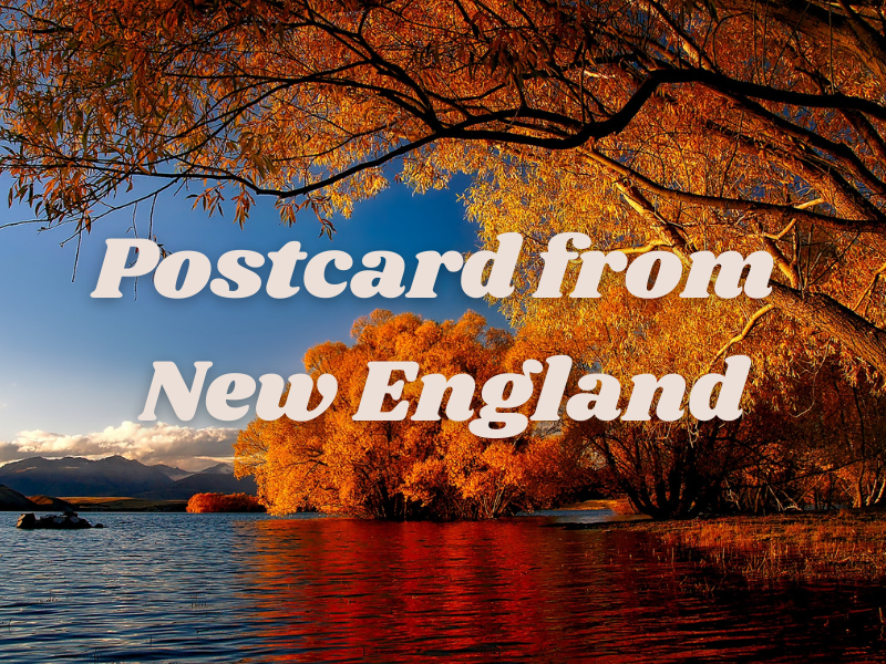 Postcard from New England | biblio-style.com
