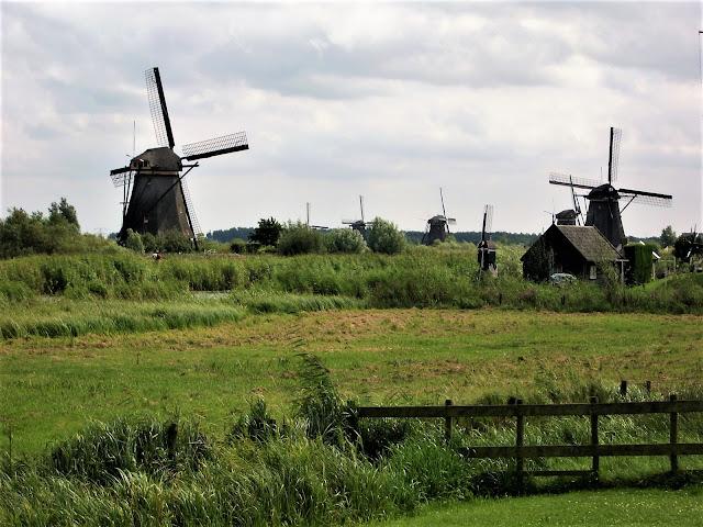 Kinderdijk i mulini a vento patrimonio dell'Unesco