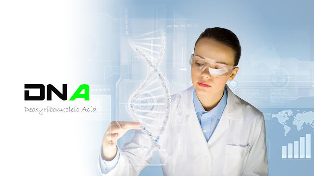 DNA full form in biology
