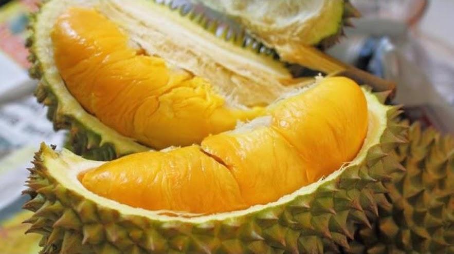 Tanaman Buah Durian Petruk Blitar