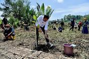 Presiden Jokowi Tanam Mangrove di Kabupaten Cilacap