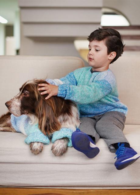 Roupinha para Cachorro de Tricô com Fio Cisne Sintonia