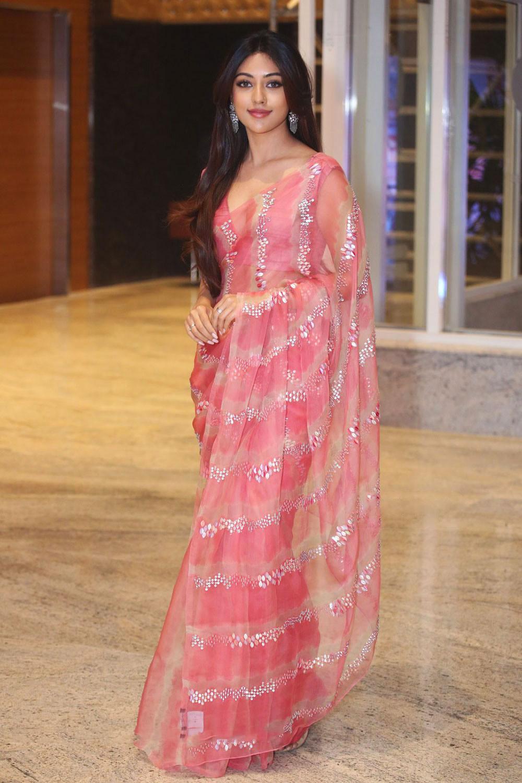 Actress Anu Emmanuel Stills In Pink Saree