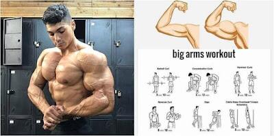Build Bigger Arms: Train Biceps & Triceps Twice Per Week!