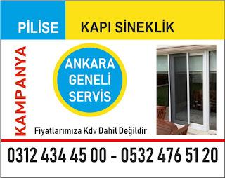 Akordiyon sineklik Ankara