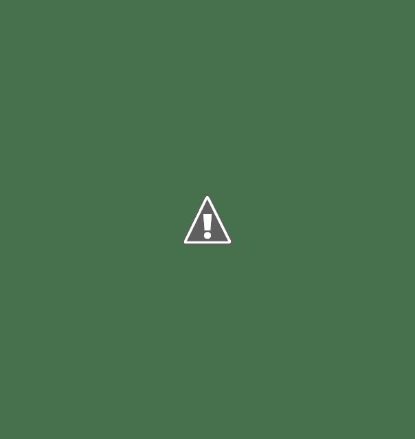 Direktur executive Lampung Independen Survey , Erwin Syahrir Sebut Dendi Kembali Pimpin Pesawaran