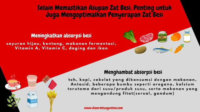 makanan yang menghambat absorpsi besi