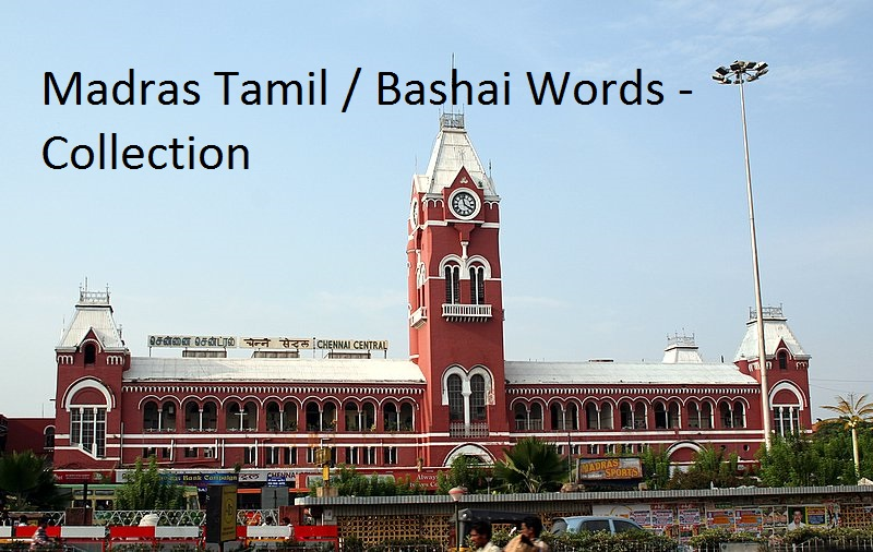 Madras Tamil / Bashai Words - Collection - Meticulously